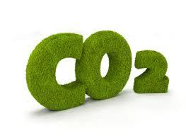 image-6729411-Co2 Fussabdruck.jpg